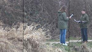 Kamera-Vergleich Tele-Zoom: Am Weiher, Sony AX33 vs CX240